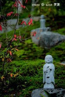 京都 嵐山 二尊院