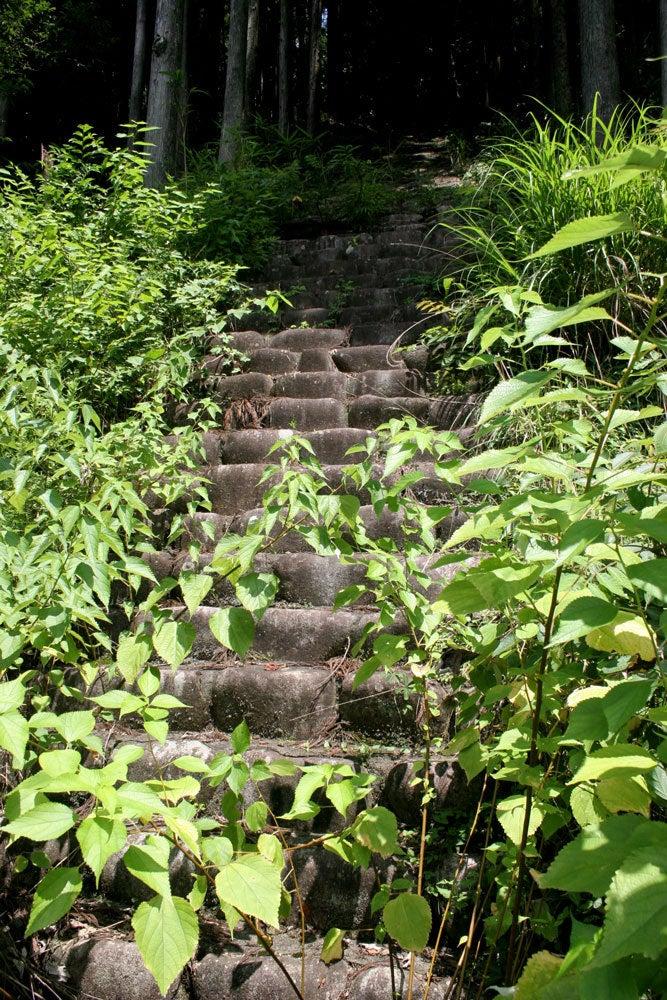 神所城/③山上に続く石段