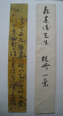 漢詩人森春濤と北方 | 岳紫のブ...