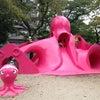 憧れのタコ公園の画像