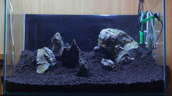 Aquarien Aquarium 60l