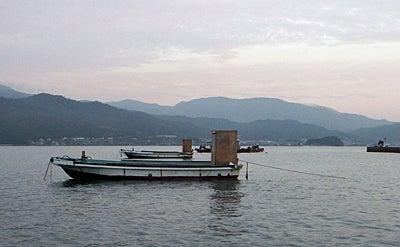 141012 宮津田井 カセ筏