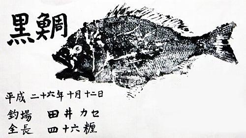 141012 46㎝チヌ 宮津田井 魚拓