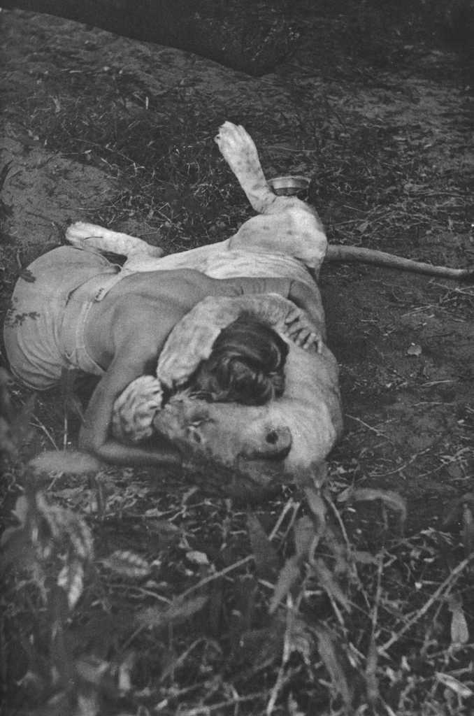 野生のエルザ