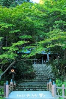 京都 日向大神宮