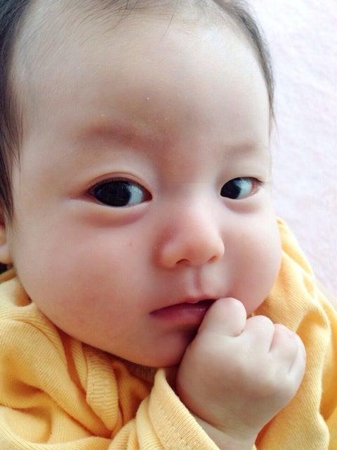に た 赤ちゃん ふた え なっ