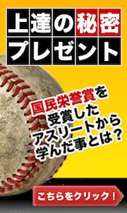 $ベースボールバイブル