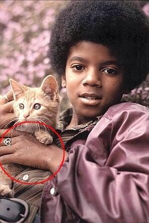肌 マイケル の 色 ジャクソン
