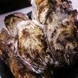 北海道厚岸の生牡蠣 …