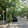 江戸郊外の目黒周辺を歩く「其の二」の画像