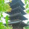 東寺 秋期特別公開の画像