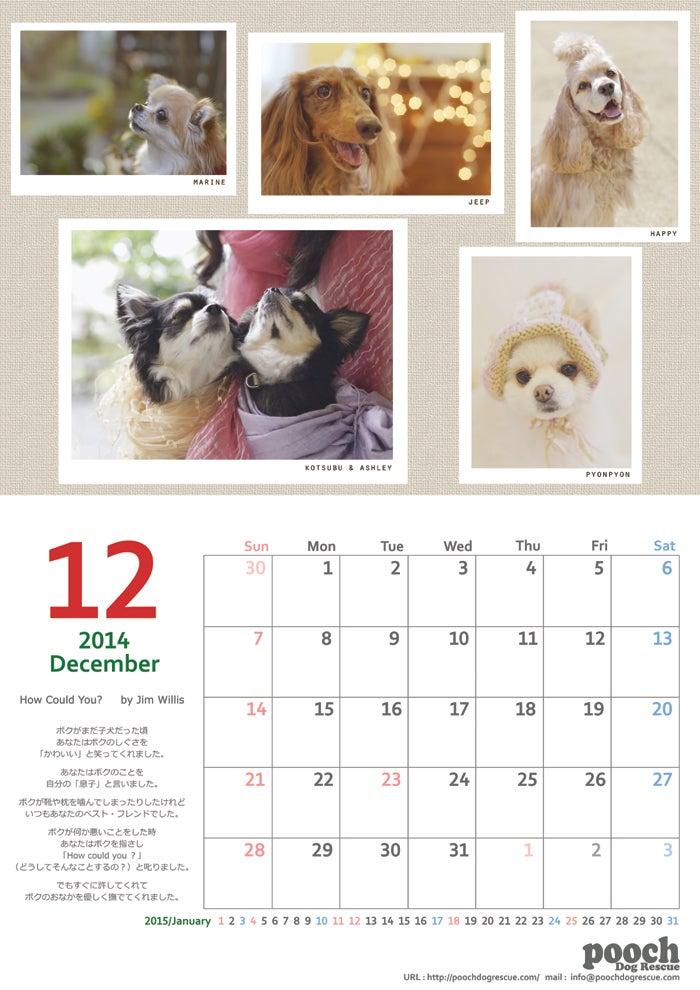 2015Poochチャリティカレンダー発売中‼︎の記事より