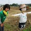 ワイワイ農園⑰ 功労者賞の画像