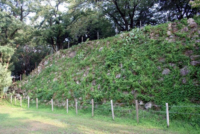 加納城/⑧本丸北側の石垣