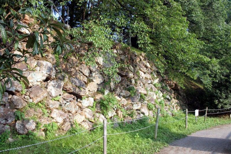 加納城/⑩垣根の合間から見える石垣