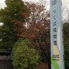 筑波実験植物園の画像