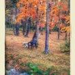 秋のお出かけ2