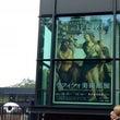 ウフイッツ美術館展