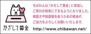 ソフトバンクモバイル(株)