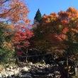 秋の遠足♪