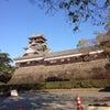 熊本城の画像