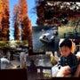 ⭐️井の頭公園⭐️