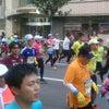 神戸マラソン【ヴィッセルサポ特集②】の画像
