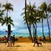 ハワイ到着*の画像