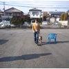 前橋市 渋川市 犬のしつけ・認定試験 ルテアの画像