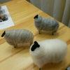 羊のワークショップの画像