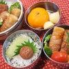 パパと息子ちゃんの☆豆腐の豚バラ肉巻き☆照り焼き味弁当♪の画像