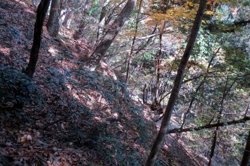 菅原城/⑨見下ろすと急斜面
