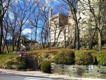 ブランダイス大学、留学