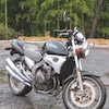 不要バイクの廃棄処分の画像