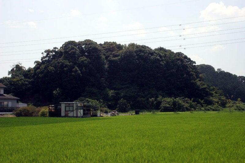 八幡山城/①北からの遠景