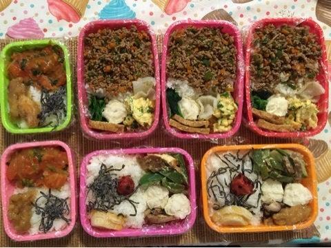 お弁当丸ごと冷凍   ☆ORANGE DAYS☆