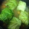 煮物が美味しい季節♪ ロールキャベツの画像