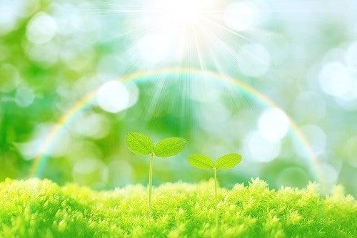 無料プレゼント】虹と光のハーモニー10周年謝恩祭~三浦編~ | 虹と光のハーモニー