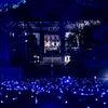 青蓮院門跡 ライトアップの画像
