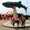 …めんそ~れ沖縄3日目美ら海水族館編…☆。.:*・゜の画像