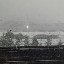 雪だよ~!