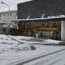 雪だ~~!!!