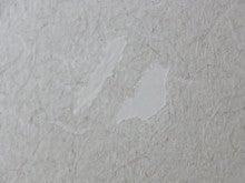 壁補修中ボンド