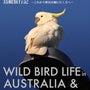 BIRDER 08〜…