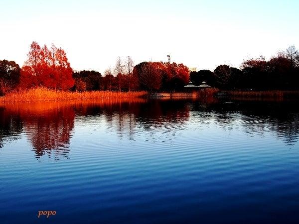 池に映った紅葉01