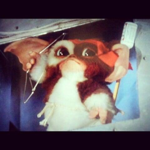 ギズモちゃんペットで飼いたいよー Xmas映画 loveギズモ ランボーwwww