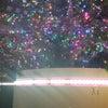 *銀座ミキモトクリスマスツリーの画像