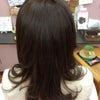 艶髪三昧の画像