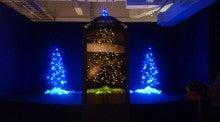 カイコクリスマスツリー01