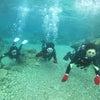 青の洞窟は行けませんでしたが、サンゴビーチで体験ダイビングときんかいFUNダイビング♪♪♪の画像